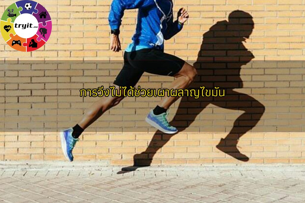 การวิ่งไม่ได้ช่วยเผาผลาญไขมันTRY IT : เว็บไซต์ที่คุณต้องลอง เทรนใหม่ ไลฟ์สไตล์ ข่าวสาร ความรู้ ความบันเทิง กีฬา