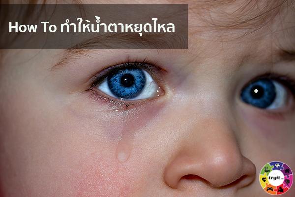 How To ทำให้น้ำตาหยุดไหล เทรนใหม่ ไลฟ์สไตล์ ข่าวสาร ความรู้ ความบันเทิงกีฬา